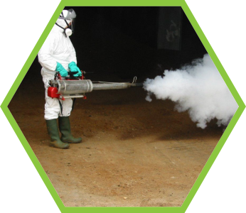 Thermal Disinfecting Service for corona virus