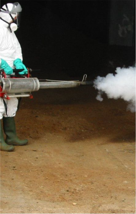 Thermal disinfecting services
